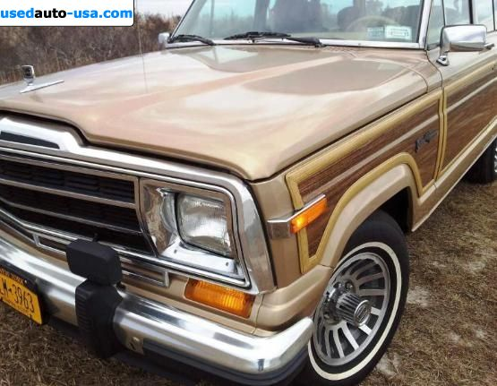 for sale 1989 passenger car jeep wagoneer brooklyn insurance rate quote price 14900. Black Bedroom Furniture Sets. Home Design Ideas